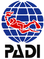 Try dives to PADI Professional courses